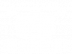 Happy Camper logo transparent