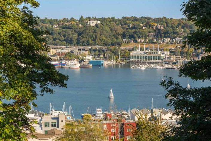 View of Lake Union with sailboat